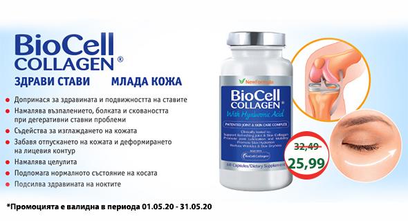 biocell_05